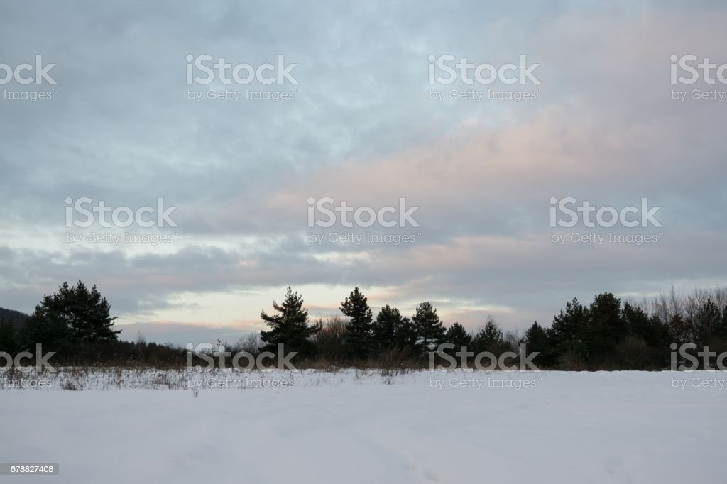 Nature covered in snow during winter. royalty-free stock photo
