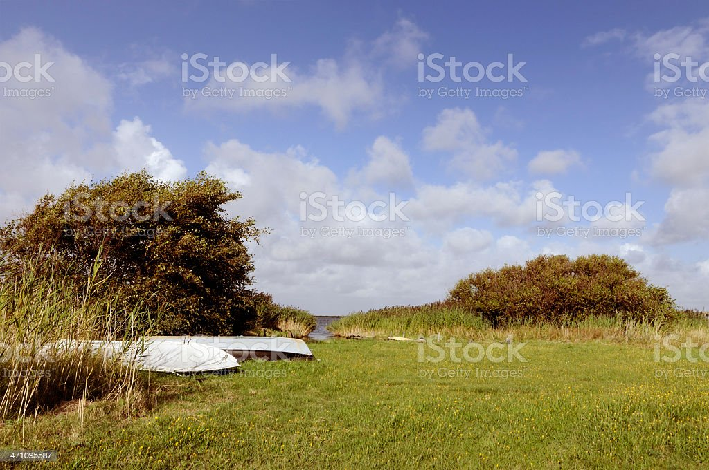 nature denmark royalty-free stock photo