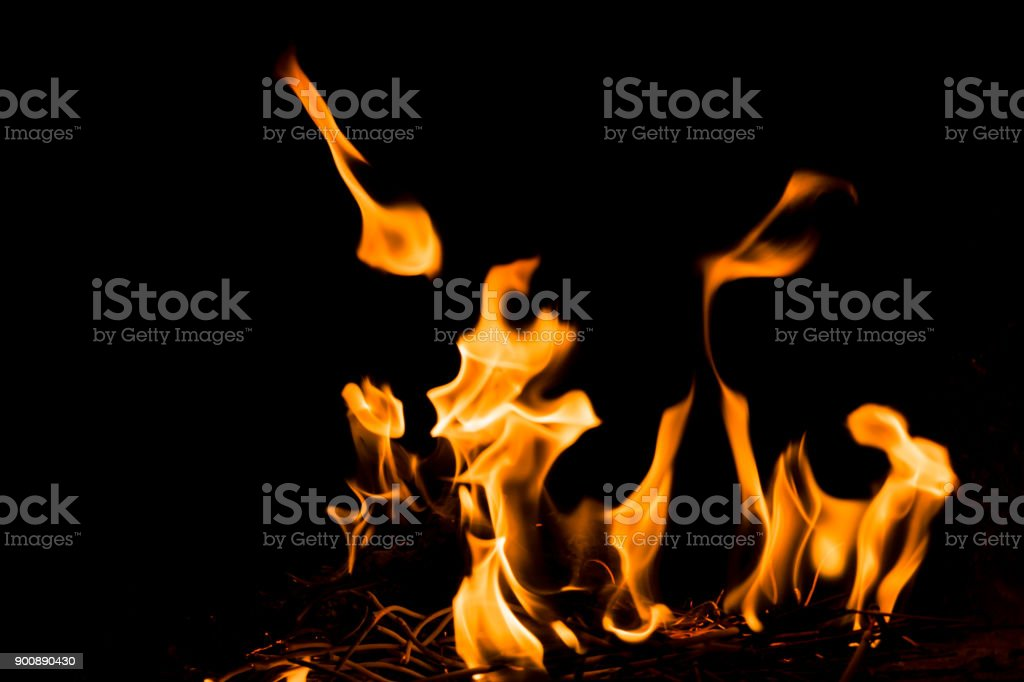 Nature Fire flames at dark night. Freeze motion of Red-Yellow fire flames burning.Burning camp fire with hot flames. stock photo