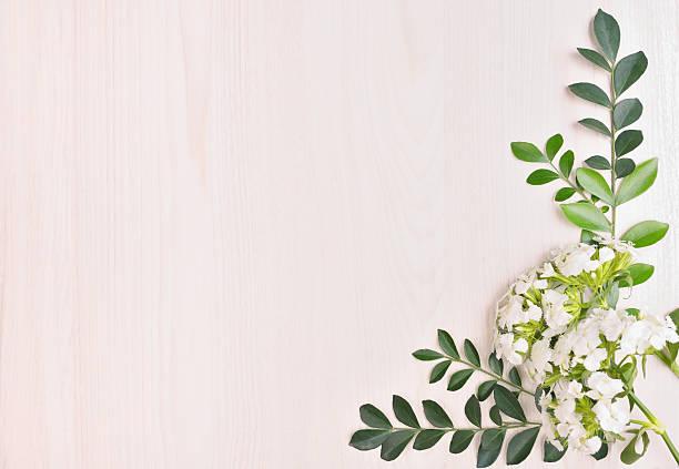 natur-frame - holzblumen stock-fotos und bilder