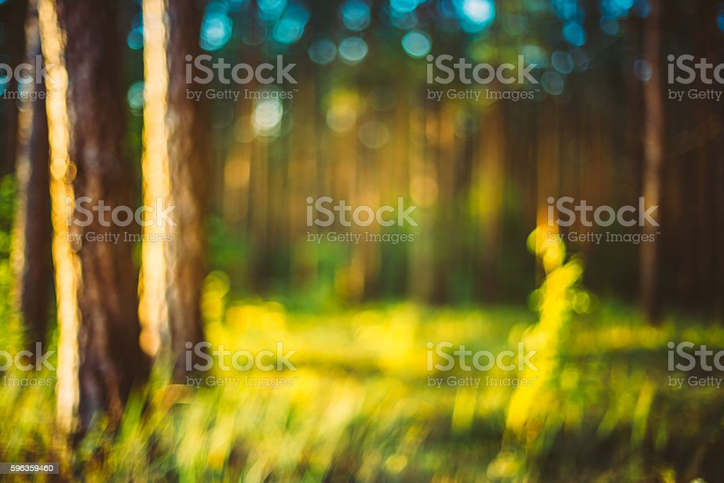 Nature Green Blurred Background Of Out  Focus Forest Or Bokeh, royalty-free stock photo