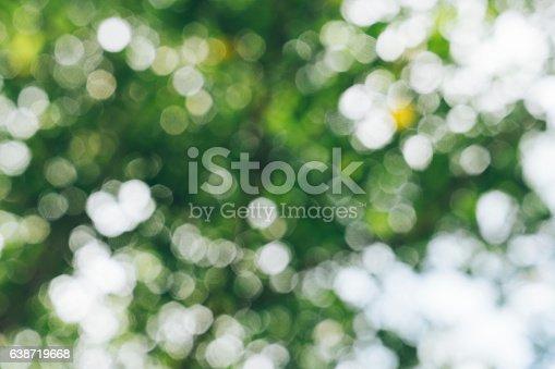 639809128istockphoto Nature greenery bokeh leaf 638719668