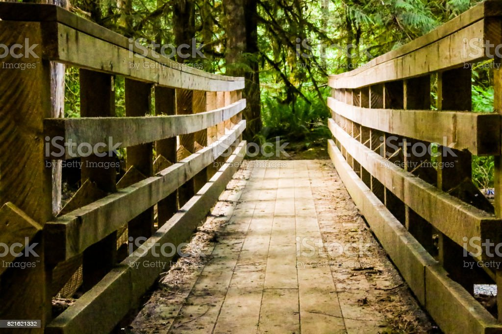 Nature Hike Foot Bridge stock photo