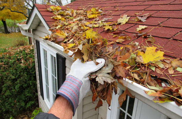 "nature, "" home maintenance, clearing gutters "" - cleaning zdjęcia i obrazy z banku zdjęć"