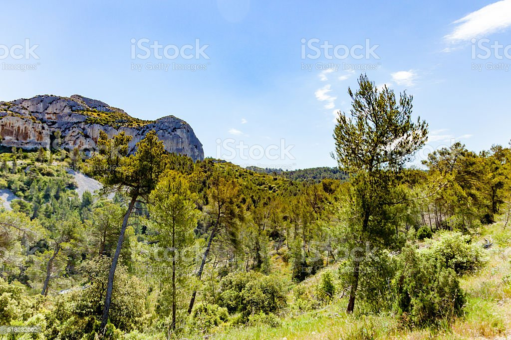 Nature in Provence - France stock photo