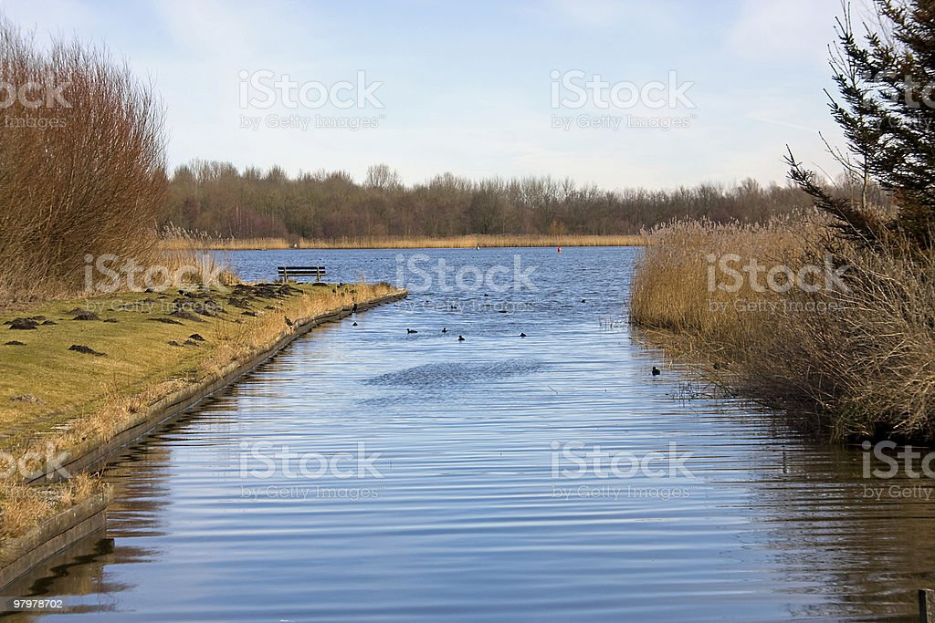 Nature in the Netherlands royalty-free stock photo