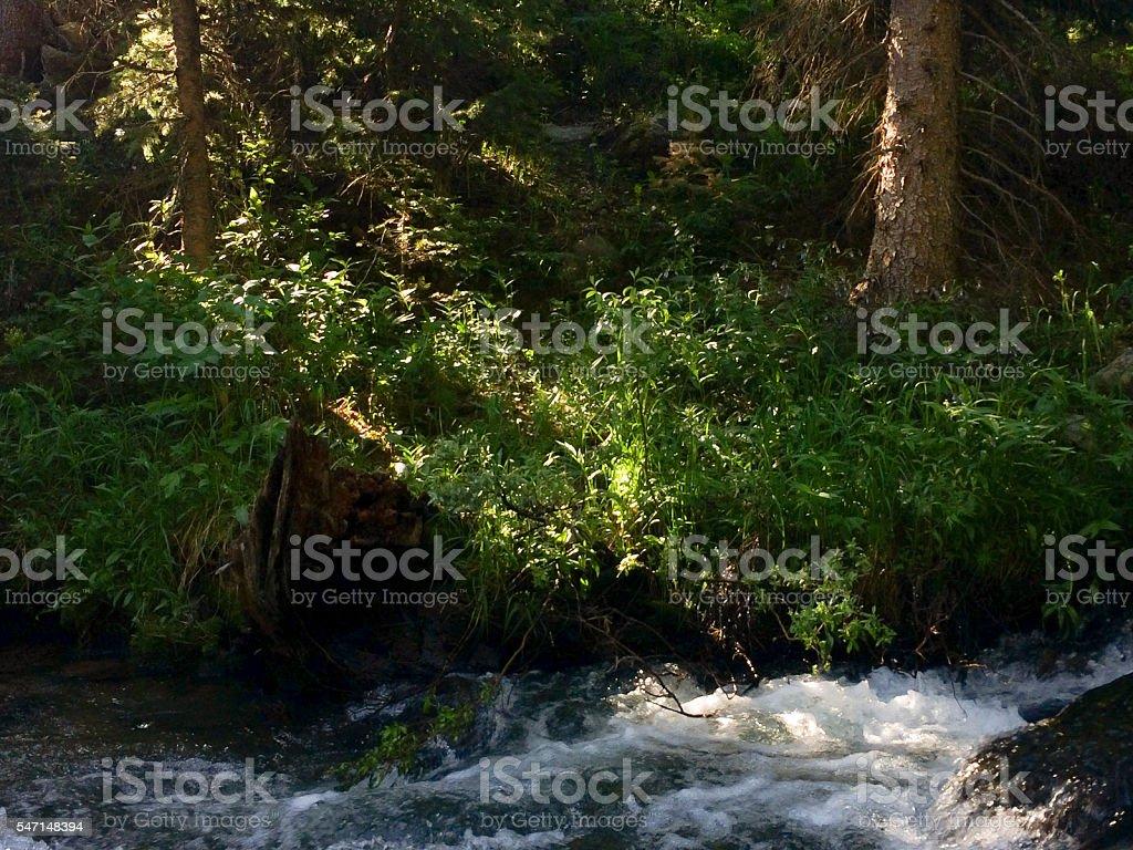 nature inspiration landscape stock photo