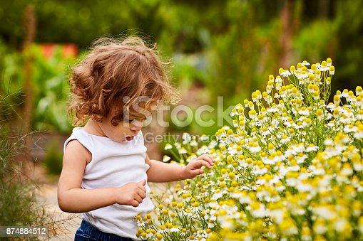 Shot of an adorable little girl picking flowers in a garden
