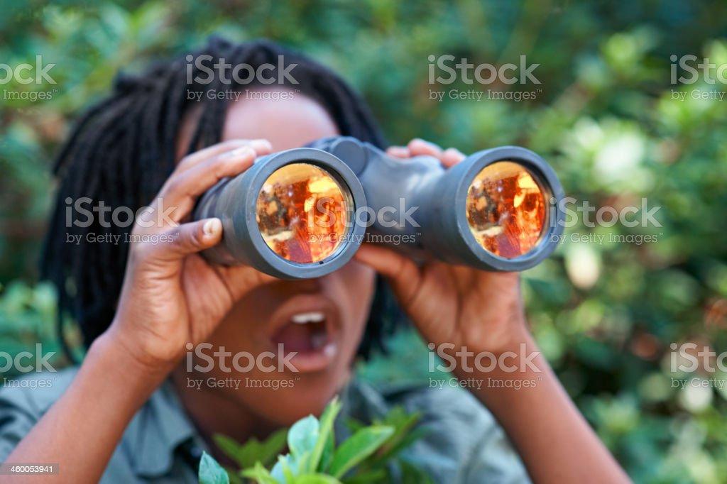 Nature is AMAZING stock photo