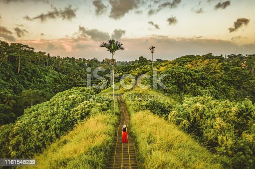 Young beautiful woman walking on Campuhan Ridge way of artists, in Bali, Ubud. Beautiful calm sunny morning. Photo of Fashionable girl walking while wearing red dress.