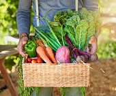Cropped shot of a man carrying a basket of freshly picked produce in a garden