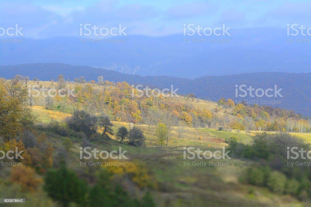 nature landscape, autumn zbiór zdjęć royalty-free