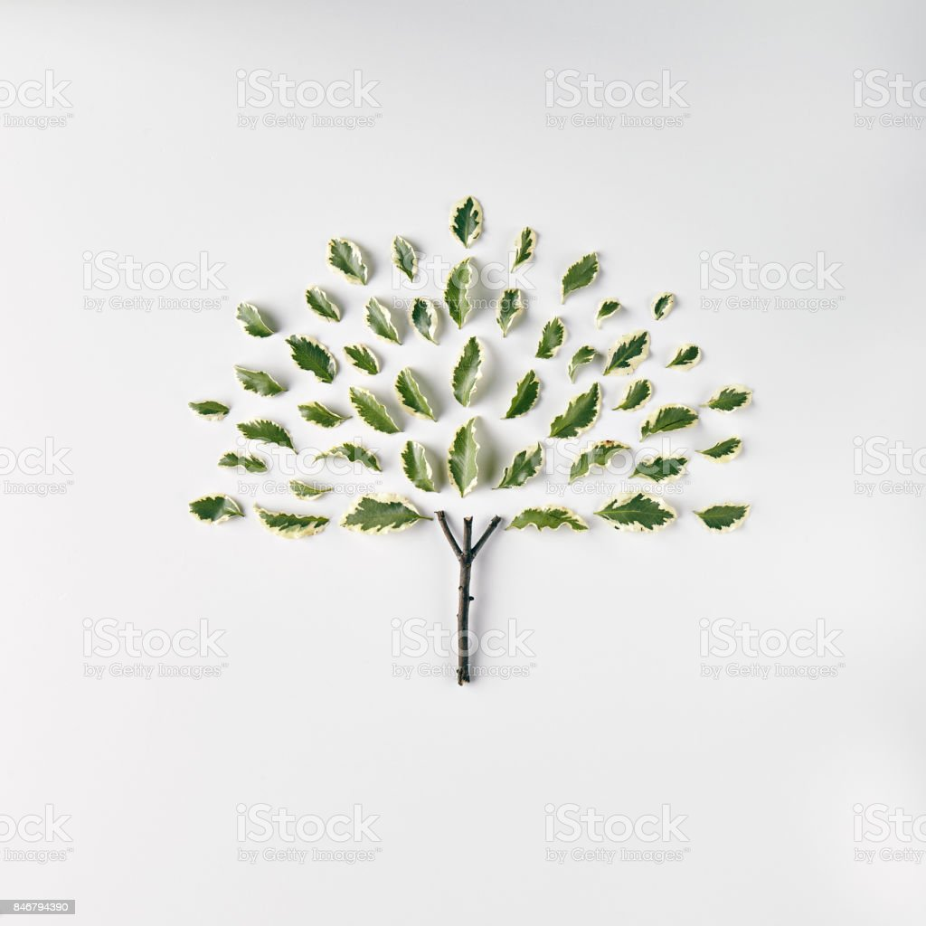 Nature Minimal Concept stock photo