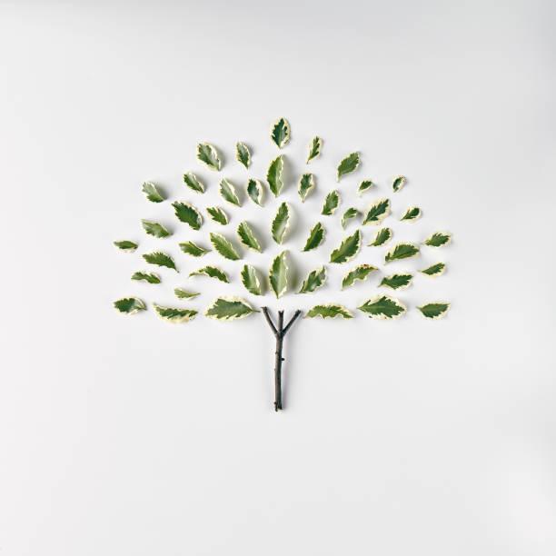 Naturen Minimal koncept bildbanksfoto