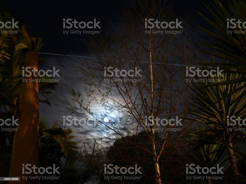 Nature Nightscape stock photo