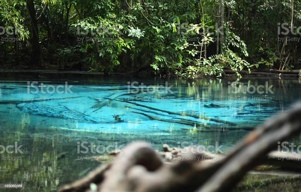 Nature of Emerald or Blue pond in the deep forest stock photo