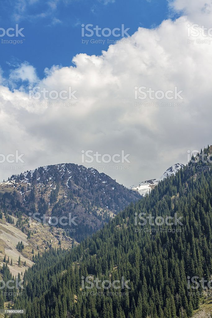 Nature of Kazakhstan royalty-free stock photo