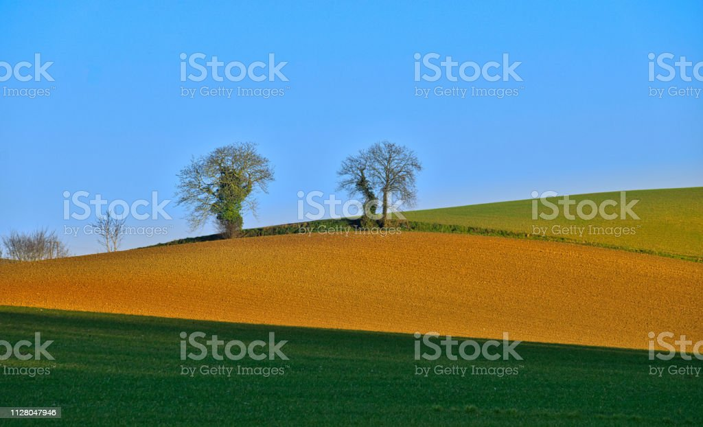 Nature palette stock photo