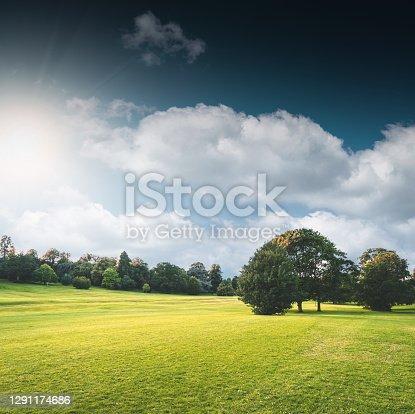 istock nature parkland in uk 1291174686