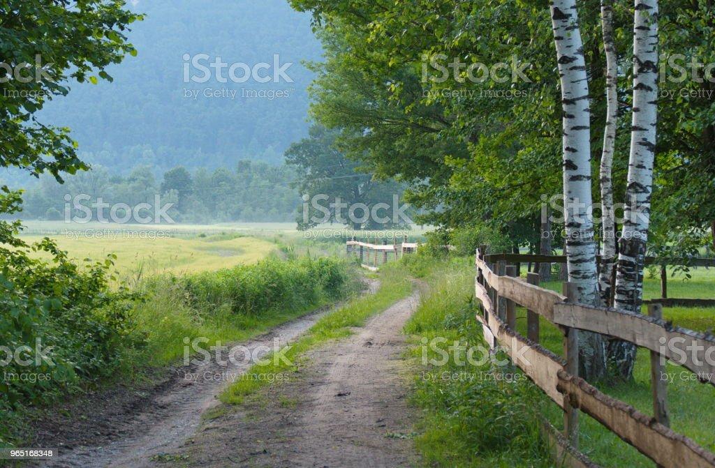 nature path royalty-free stock photo