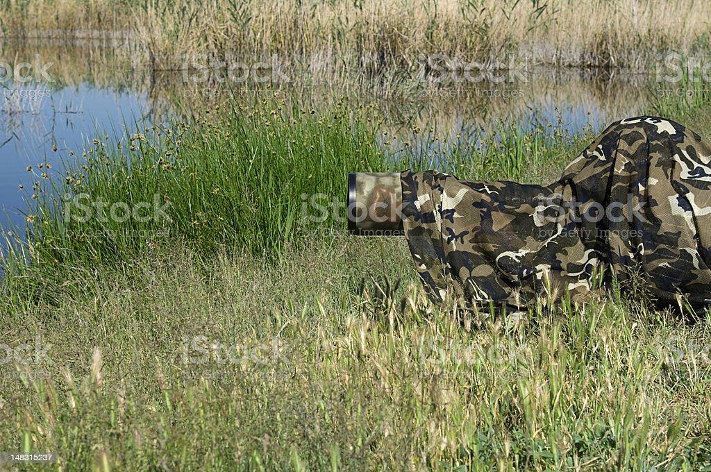 Nature Photographer stock photo