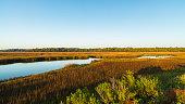 Pretty nature preserve on Big Talbot Island in Jacksonville.