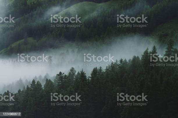 Photo of Nature