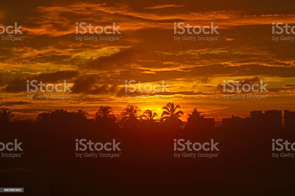Fotos de naturaleza - foto de stock
