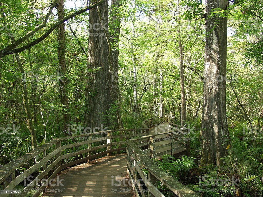 Nature Preserve royalty-free stock photo