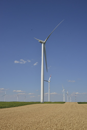 Wind farm in an agricultural field