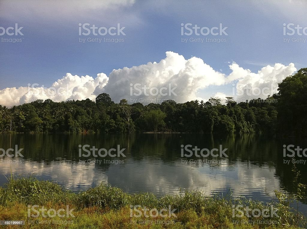Nature Reflection stock photo