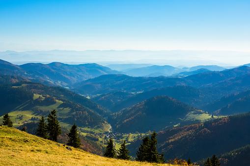Nature Reserve, Mountain Belchen, Upper Black Forest, Germany