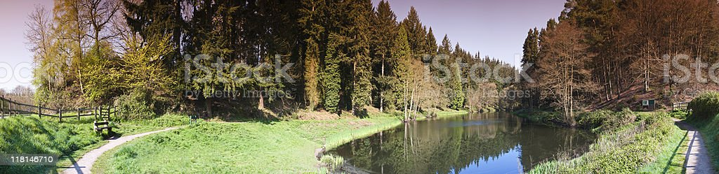 Nature reserve. royalty-free stock photo