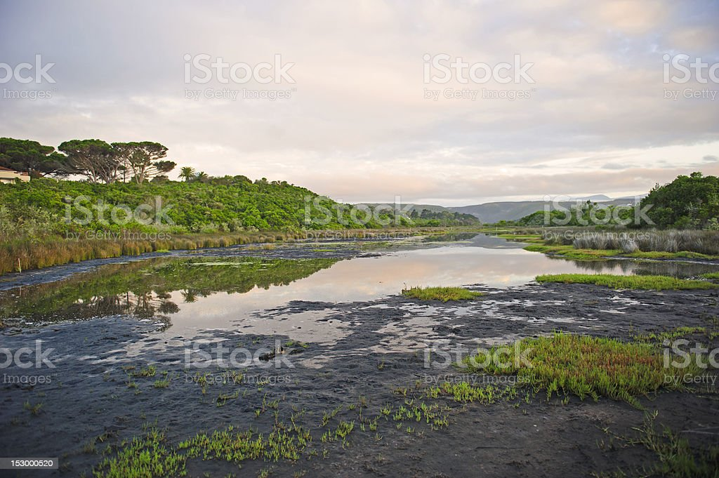 Nature Reserve stock photo