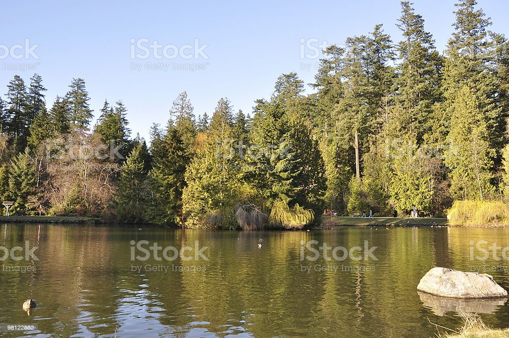 Nature scene in the park royalty-free stock photo