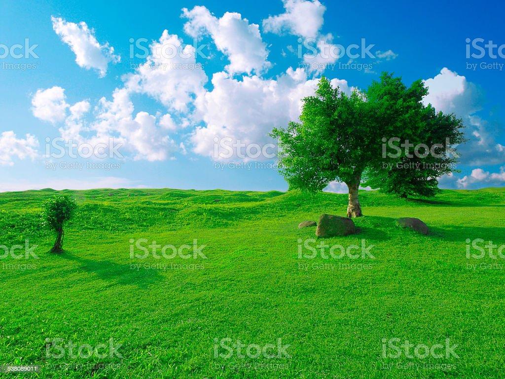 Nature scene stock photo