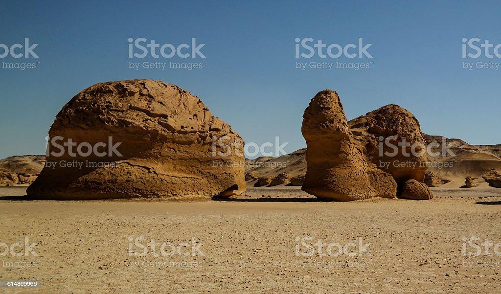 Nature sculpture in Wadi Al-Hitan aka Whales Valley, Egypt stock photo