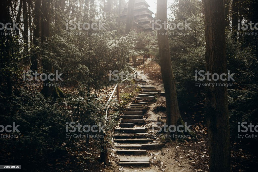 Nature stairs path in the mountains, stone stairway for hiking leading to christian church in Norway, rustic forest landscape, adventure concept zbiór zdjęć royalty-free