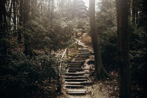 산에서 자연 계단 경로 노르웨이 소박한 숲 프리 어드벤처 개념에서 기독교 교회에 최고의 하이킹을 위한 돌 계단 0명에 대한 스톡 사진 및 기타 이미지