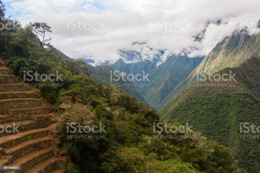 Terrazas De Cultivo Circundantes De Naturaleza Foto De Stock