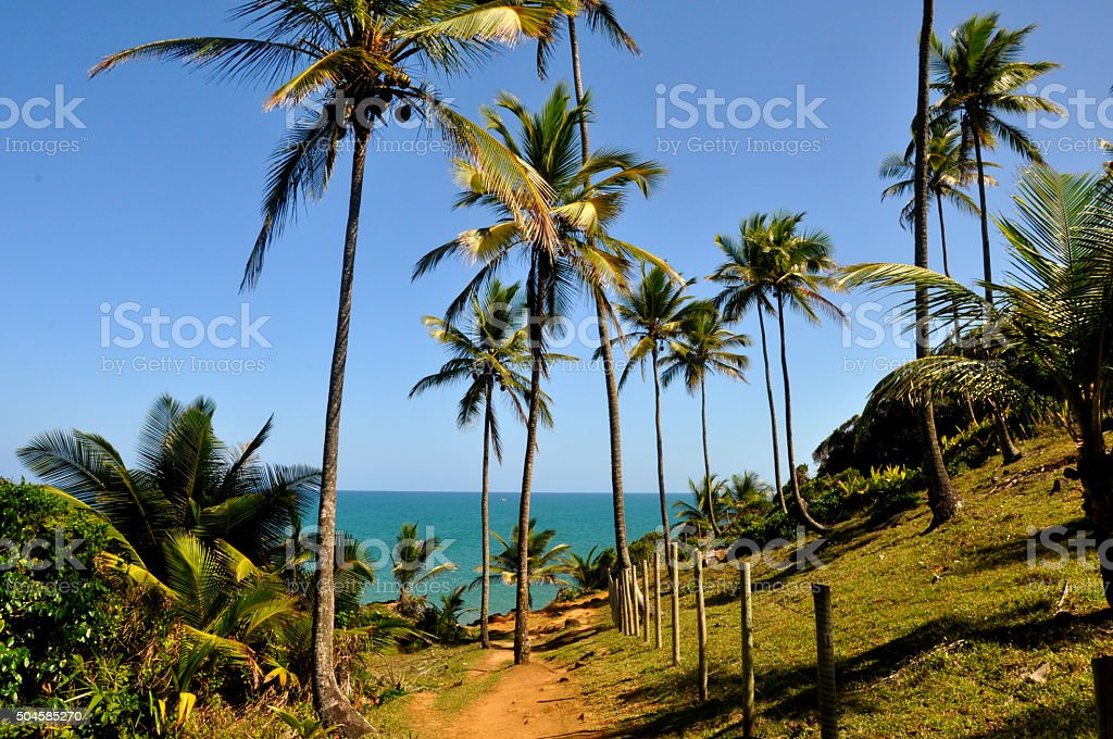 Nature trail in Itacaré, Brazil in the State of Bahia stock photo
