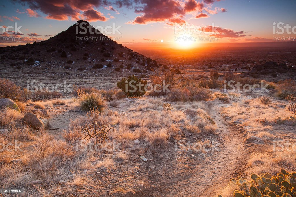 nature trail sunset stock photo