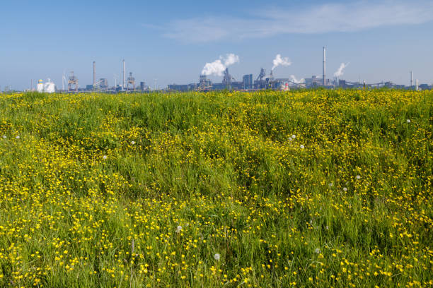 Nature versus industry (wide version) stock photo