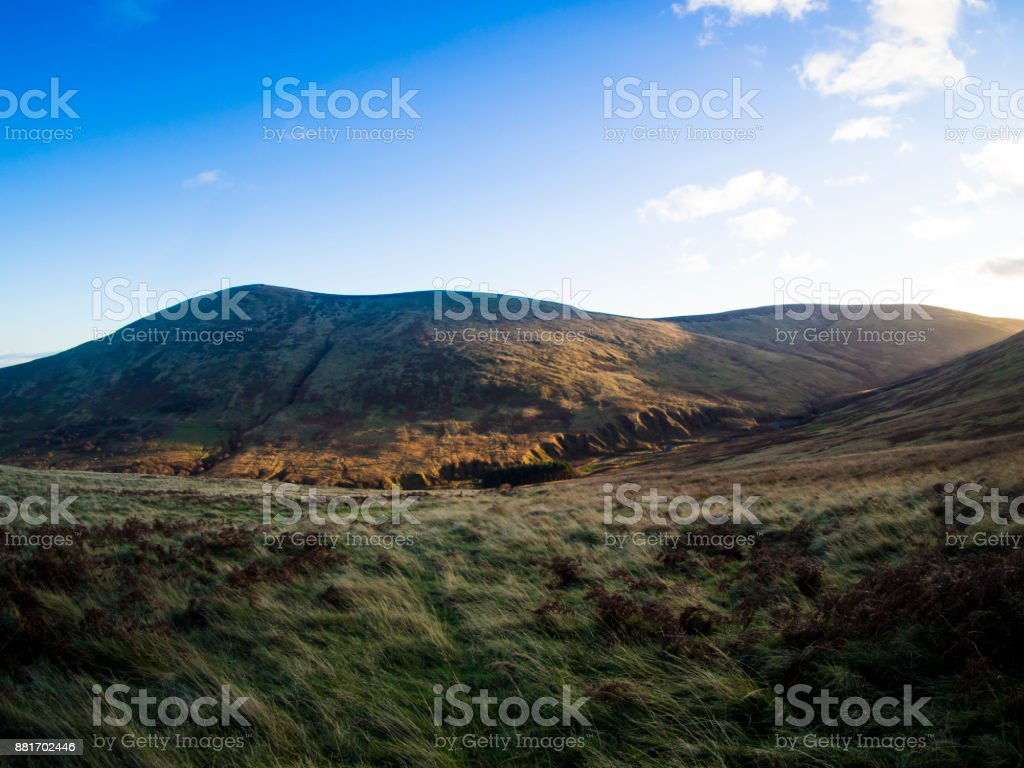 Nature View of Cheviot Hills stock photo