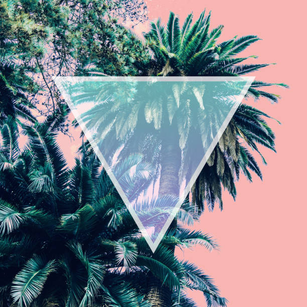 nature with palm trees in the inversion colours and triangle frame. stock photo