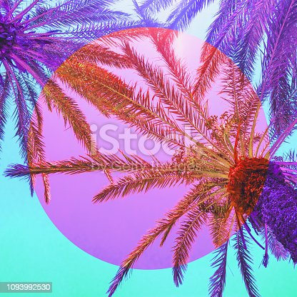 istock nature with palm trees in the inversion pink and purple colours and circle frame. 1093992530