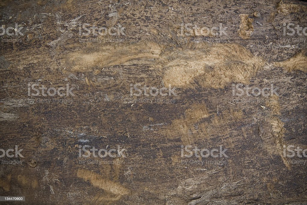 Nature Wood Background royalty-free stock photo