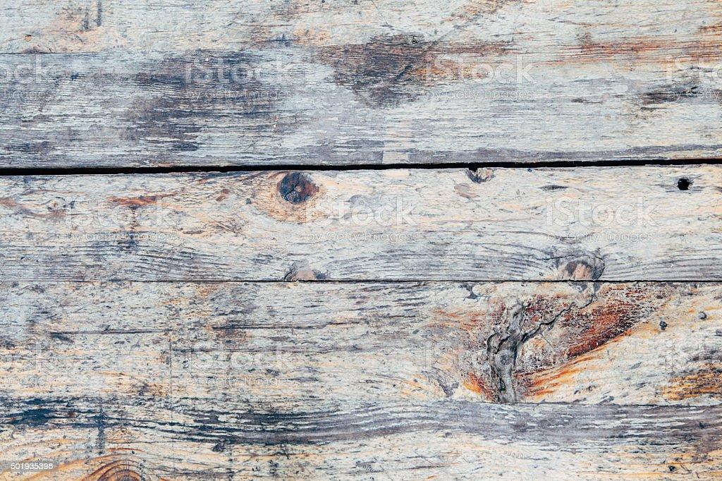 Nature wood stock photo