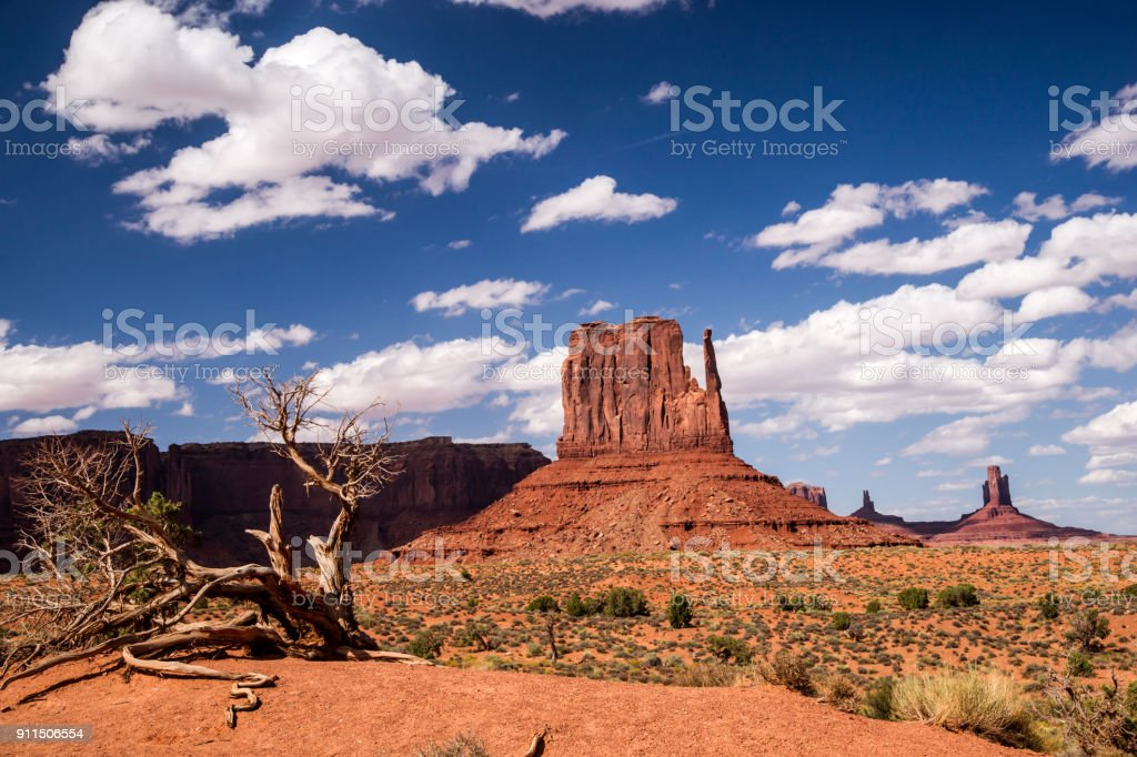 Nature's Artistry at Monument Valley stock photo