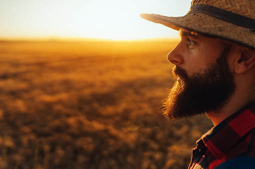 Handsome young farmer on a wheat field